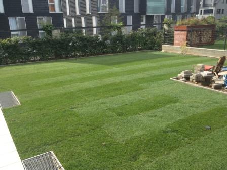 nouvelles perspectives emploi s rl entretiens espaces verts pose de pelouse en rouleaux. Black Bedroom Furniture Sets. Home Design Ideas
